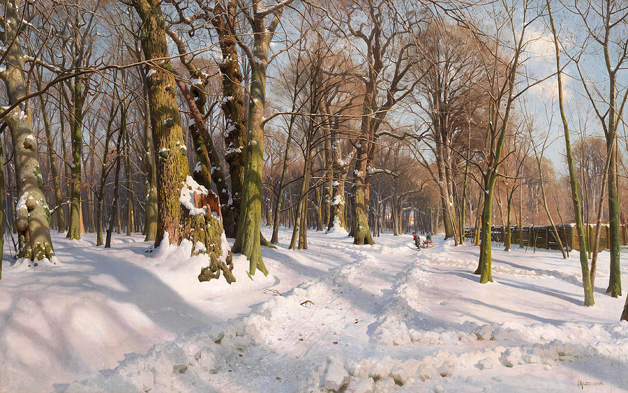 snowy-forest-road-in-sunlight-peder-mork-monsted