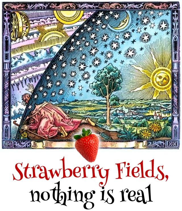 strawberry fields-interior