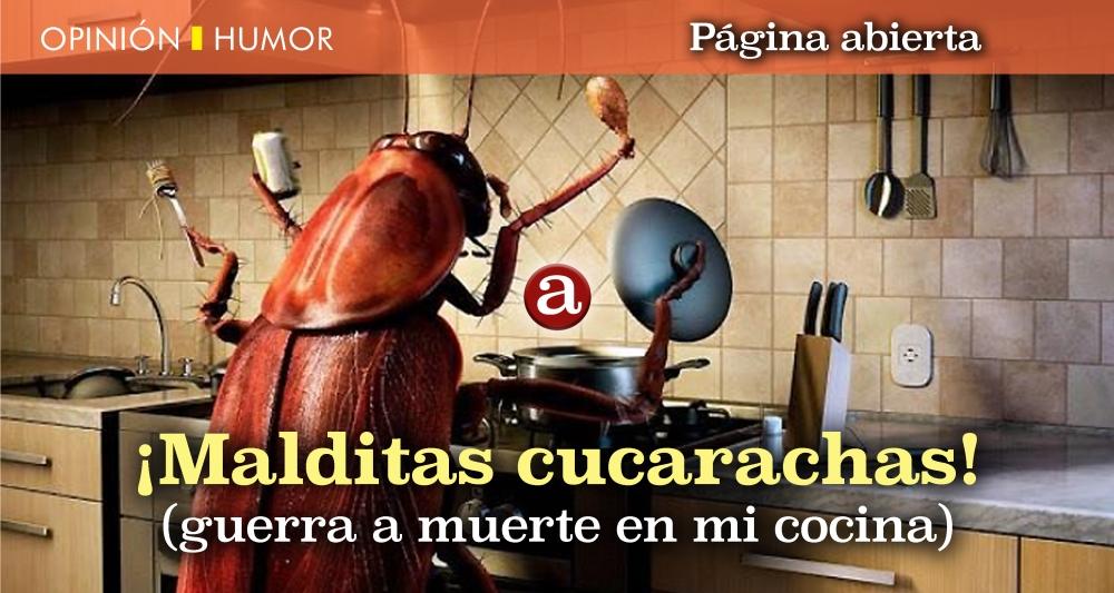 Malditas cucarachas